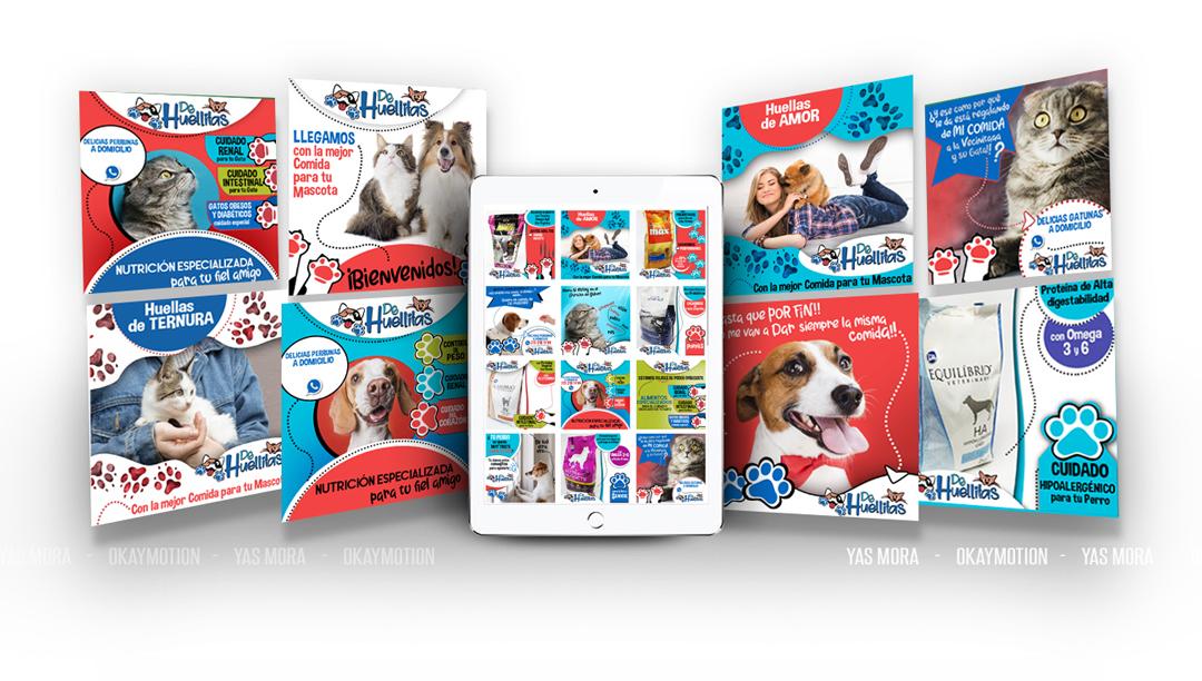 diseño de redes para tiendas de mascotas