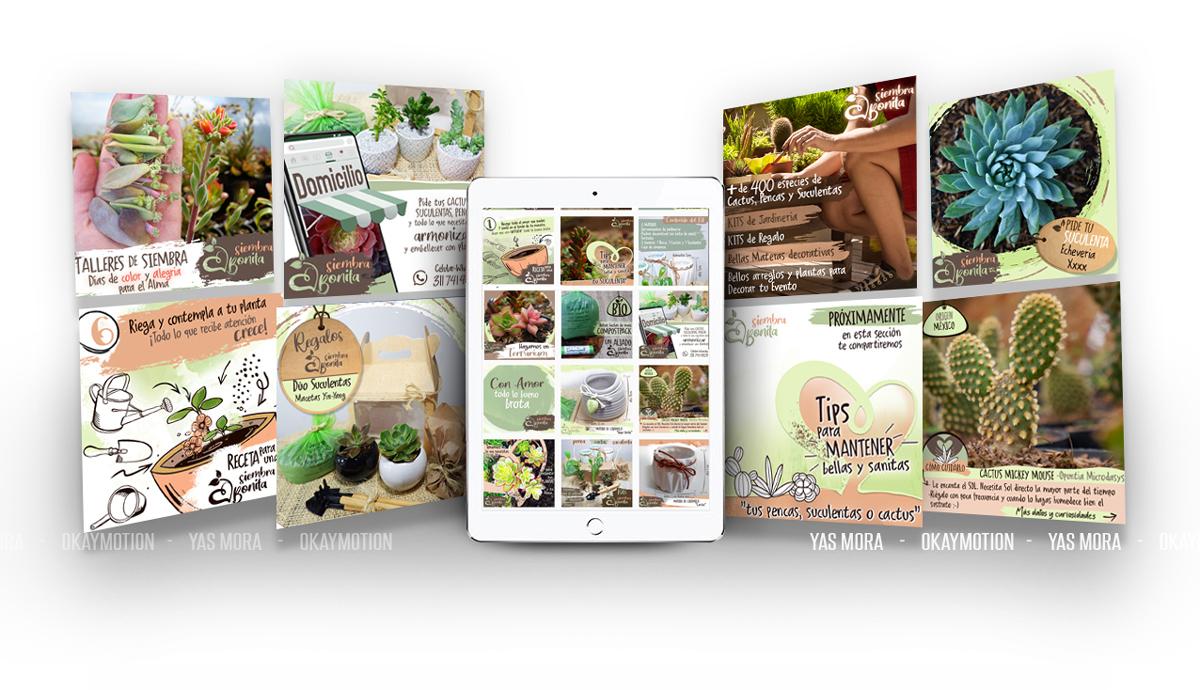 Diseño de Imagen para empresas