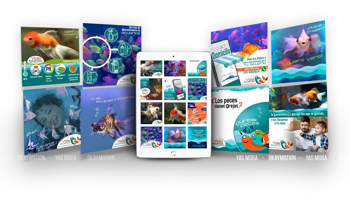 Diseño de Imagen para Redes Sociales Empresas