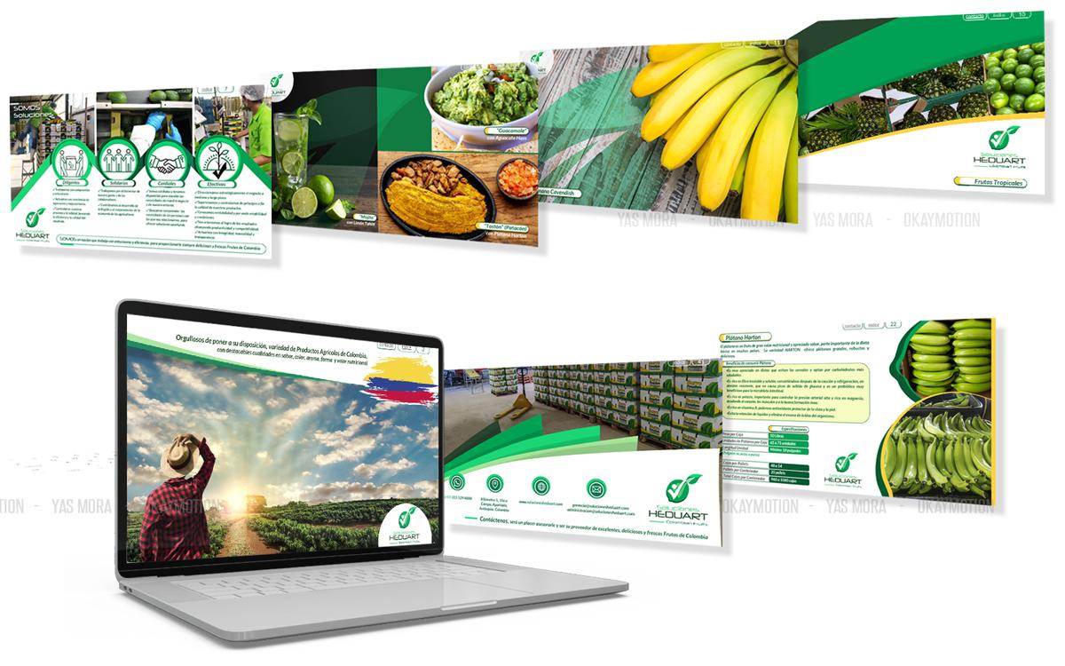 Portafolio y presentaciones empresariales