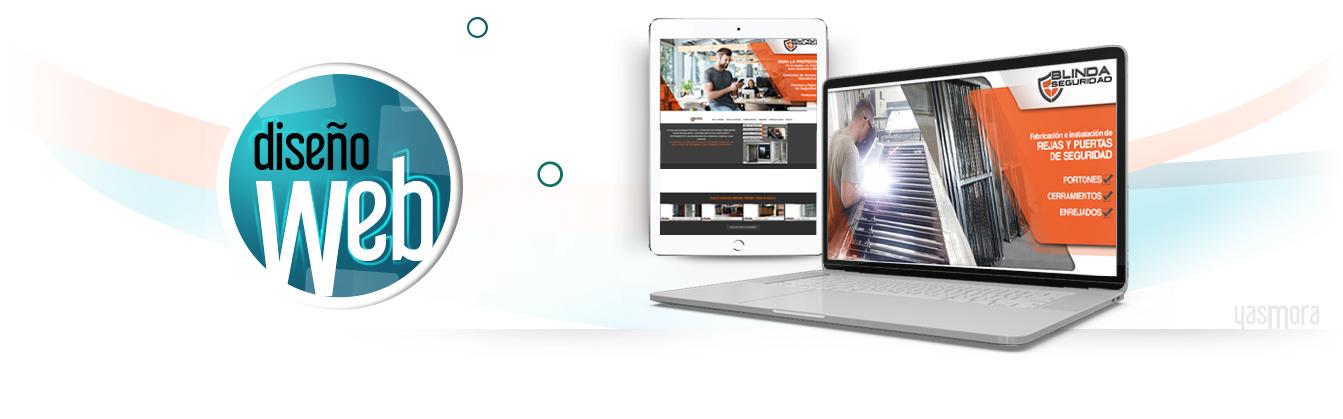 Diseño Profesional de Sitios Web, Colombia